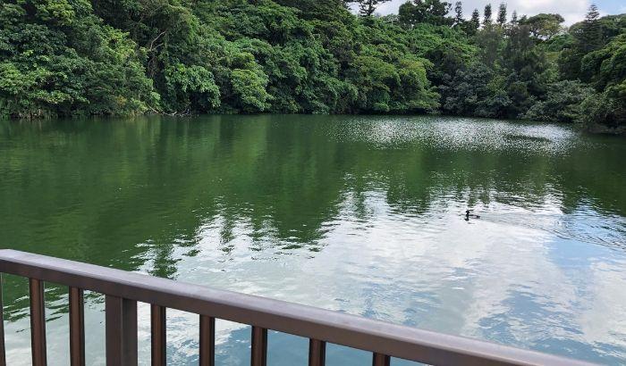沖縄こどもの国に行った感想