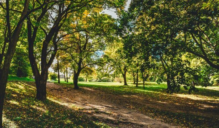 友達とでも一人でも行ける「公園」
